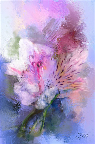 Image of painted Alstroemeria flowers