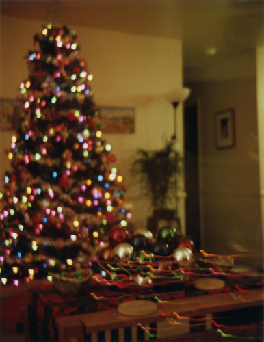 Christmas tree available light