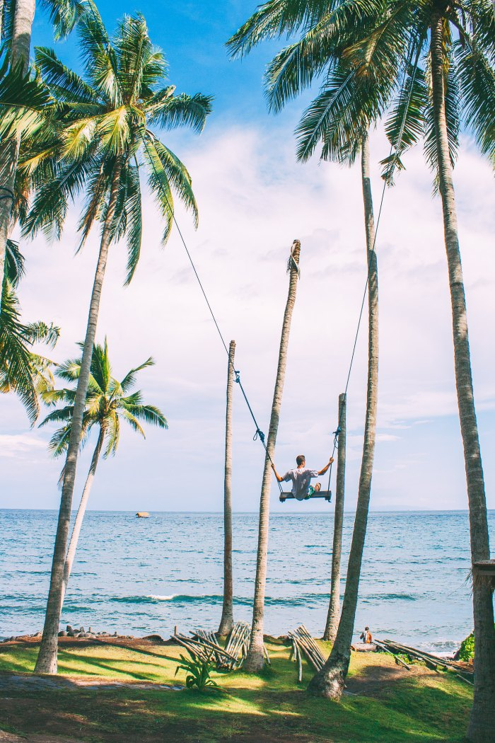 A First-Timer's Guide to Ubud, Bali - Charly's Chocolate Palm Tree Swing