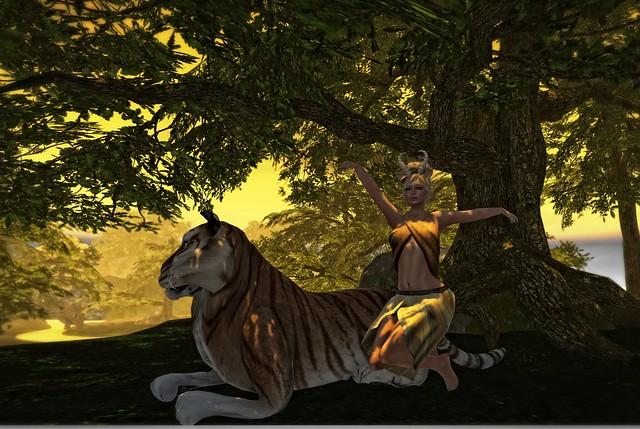 Safari_002