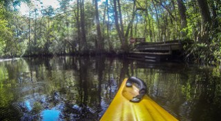 South Edisto River-024
