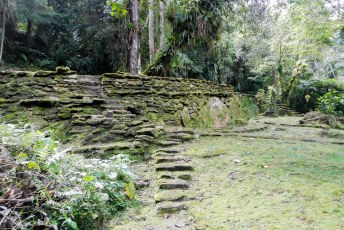 Ouwe stenen midden in de jungle.
