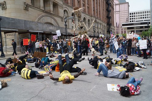 Milwaukee Bee Die-in