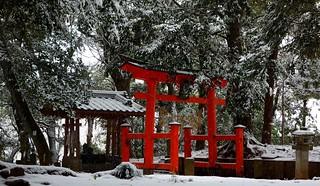 Torii in snow