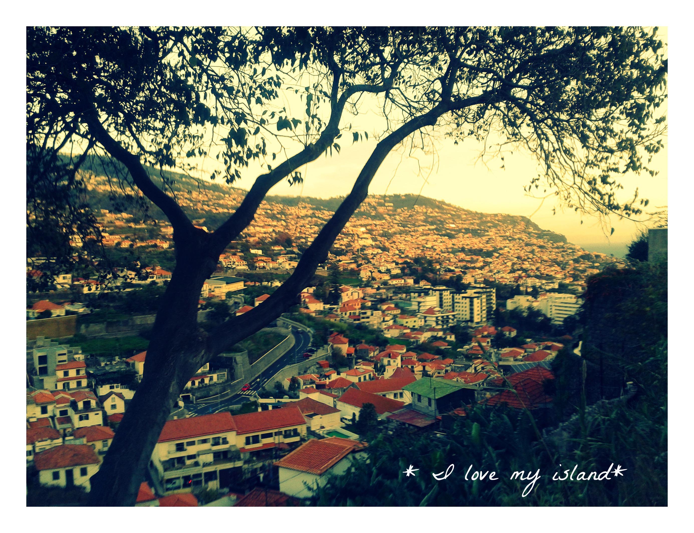 Madeira Funchal (1)