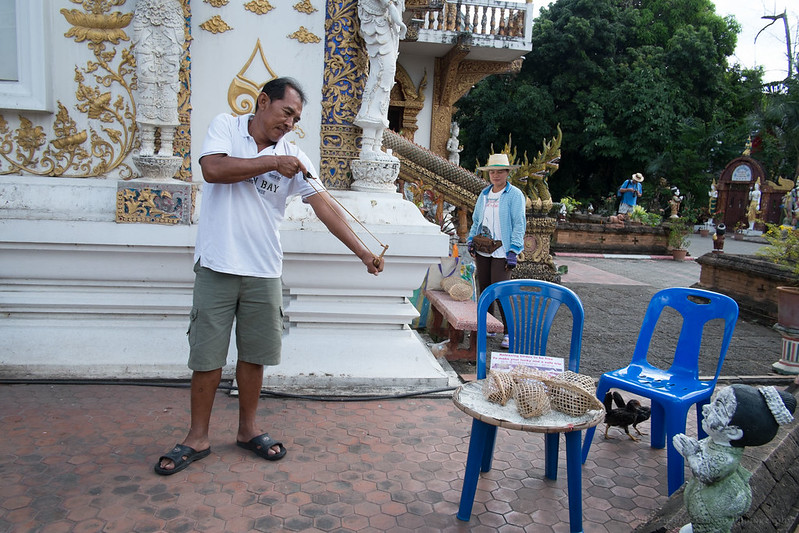 Toi trying to catch a bird - Wat Bupparam, Chiang Mai