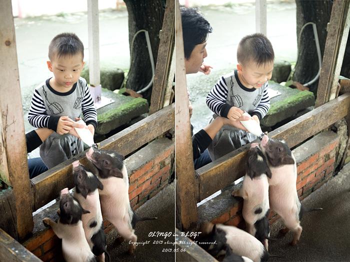 宜蘭悠閒親子遊(三) 傳統藝術中心→宜農牧場 @ OLINGO in BLOG? :: 痞客邦