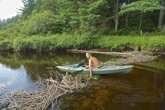 naturist 0004 Adirondack, NY, USA