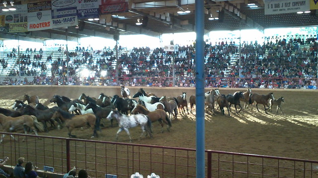 80th annual fort smith rodeo
