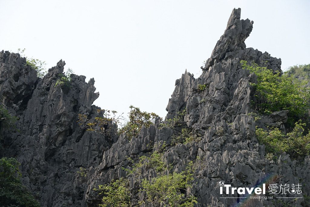 越南宁平游船 Van Long Nature Reserve (22)