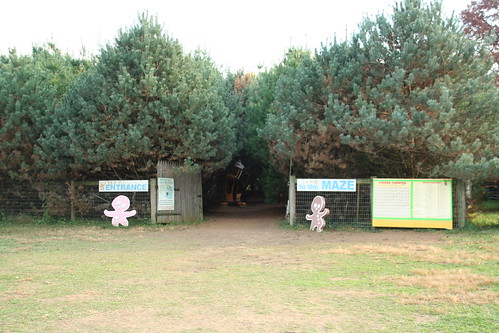 Entrance to the Pine Maze