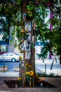 Michael Jackson Memorial Tree, Budapest, Hungary