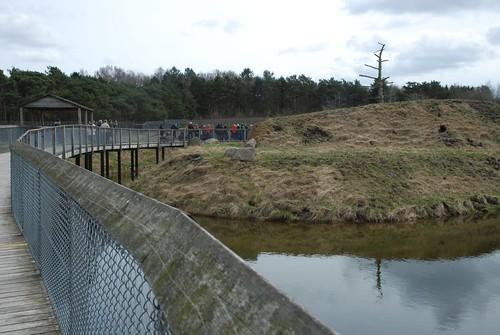 Braunbärenanlage im Skandinavisk Dyrepark in Kolind