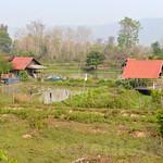 03 Viajefilos en Laos, Bolaven Plateau 66