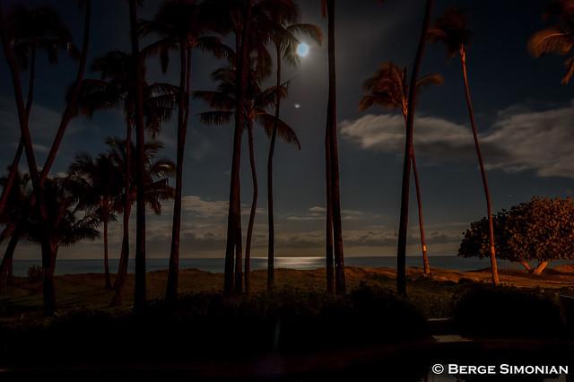 Maui_04_20080321