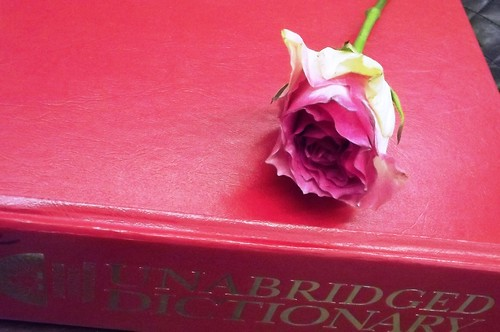 Pressed flowers: Anniversary bouquet 1
