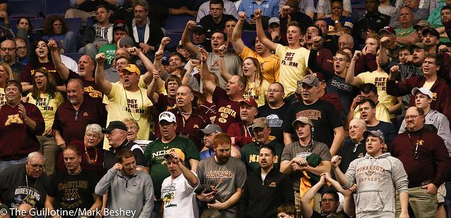 Minnesota Fans