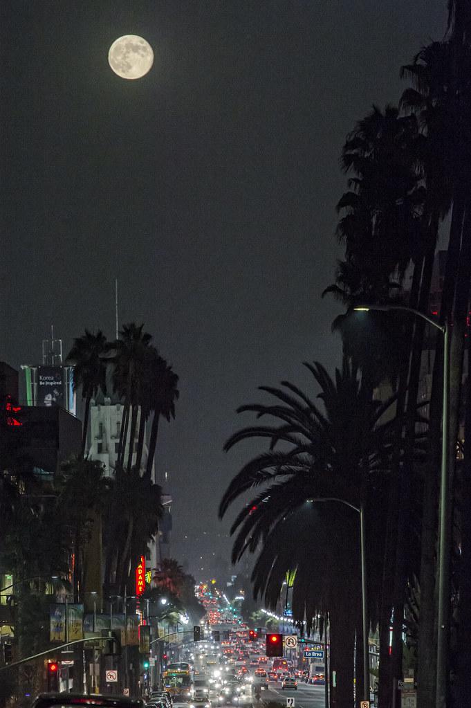 Hollywood Harvest Moon