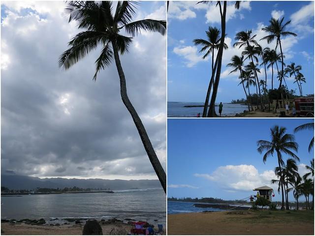 Hawaii - Haleiwa