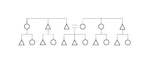 kinship diagrams