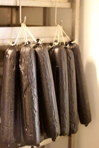 Black Puddings