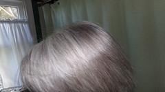 hair no shampoo day 1