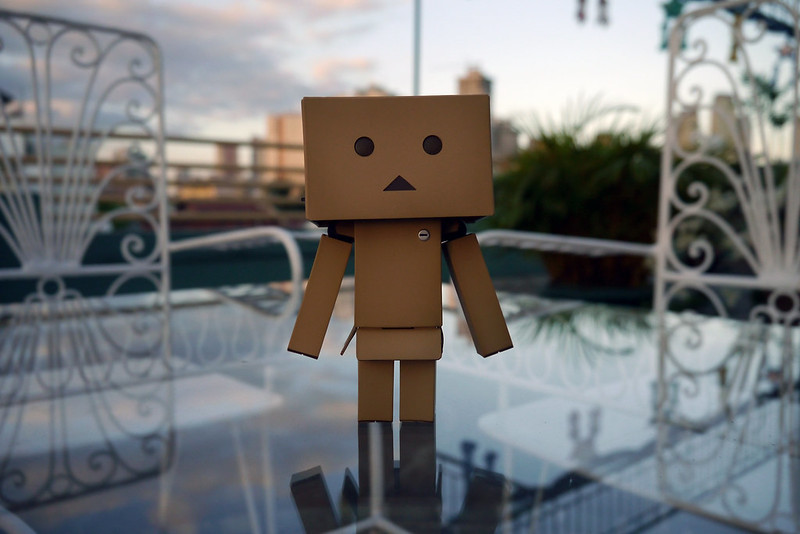 Revoltech Danboard Renewal Package 006
