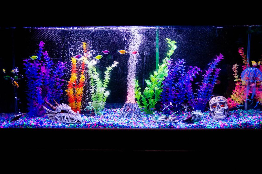 petsmart glofish gravel hd