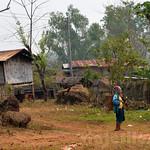 03 Viajefilos en Laos, Bolaven Plateau 76