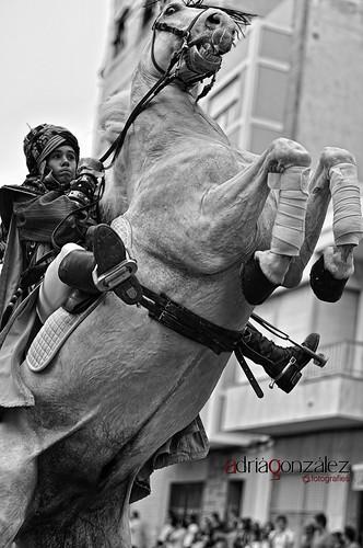 Cavall desbocat by ADRIANGV2009