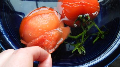Tomato Soup 14