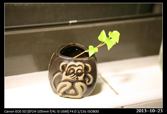 20131023_Green2