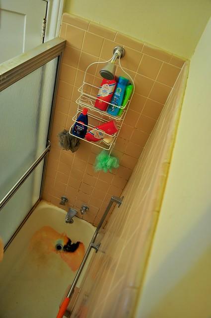 2012-01-29 Bathroom remodel before 02