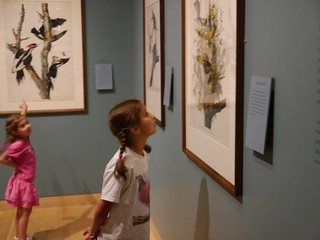 Museum of Fine Arts: Maritime art, Audubon, musical instruments