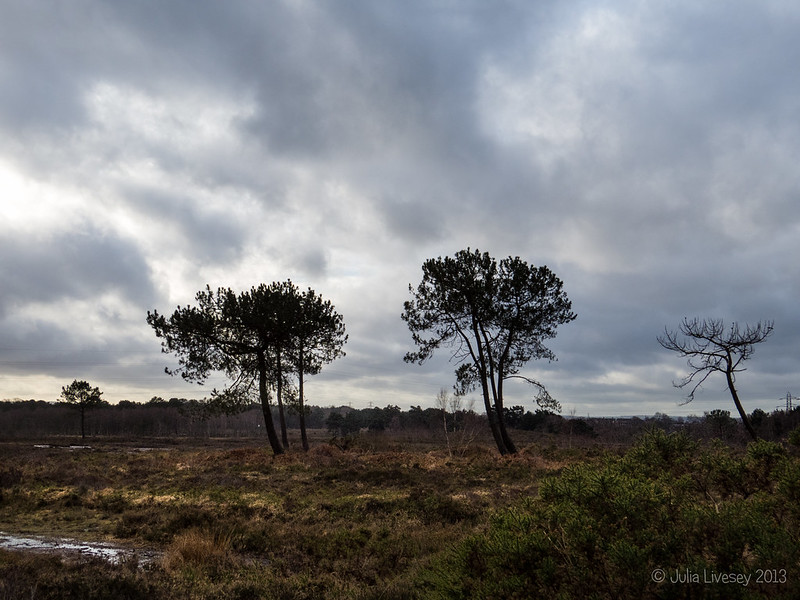 Upton Heath Skyline