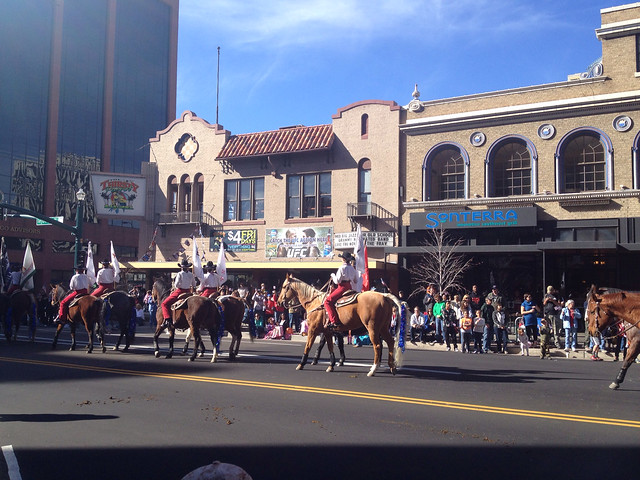 Horse Riders In Veteran's Day Parade