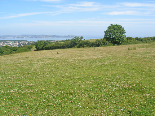 Field above Brixham