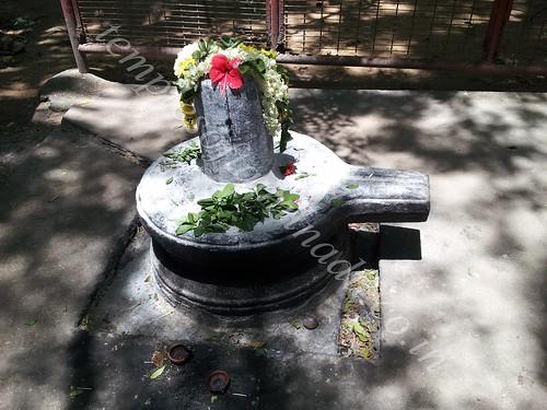 Gangadhareswarar. Velleeswarar Temple Mangadu