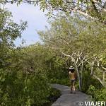 Viajefilos en San Cristobal, Galapagos 008