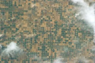 Like a Mondrian, fields in Kansas, USA