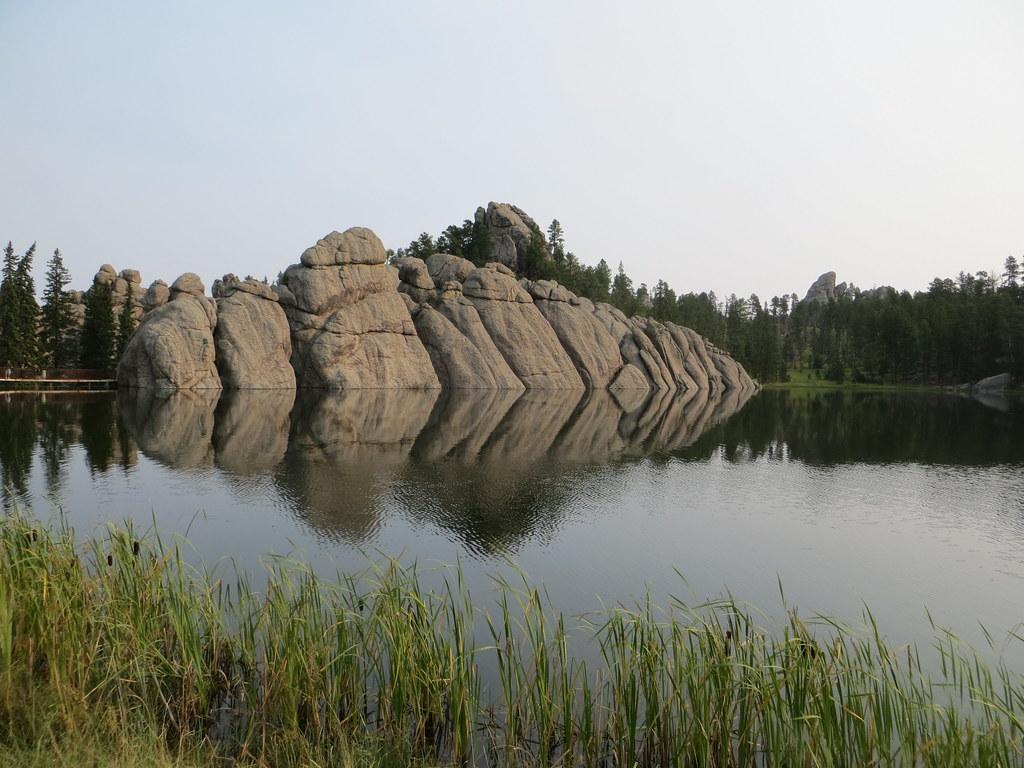Custer State Park South Dakota where bison roam free