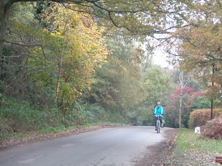 Sue gliding into Piltdown having dallied picking up 2lbs of apples from roadside.