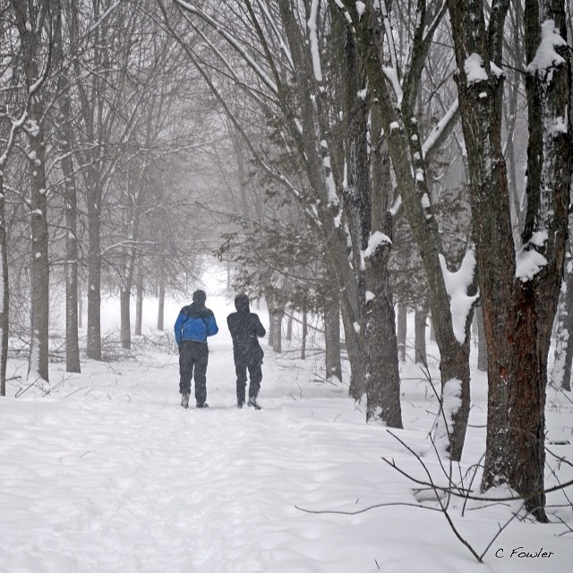 22/1/2014 - where I walk {Macaulay Conservation centre with my photo club} Lots of snowy atmosphere last Sunday. #photoaday #whereiwalk #princeedwardcounty #macaulay #conservation #winter #weather #snow #trail #pecfotoclub
