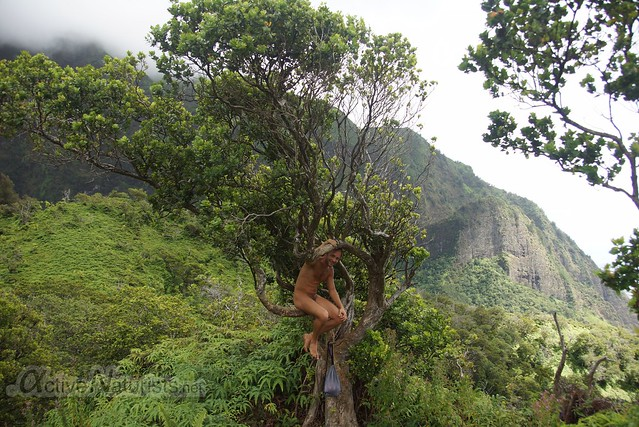 naturist  0003 Iao valley, Maui, Hawaii, USA