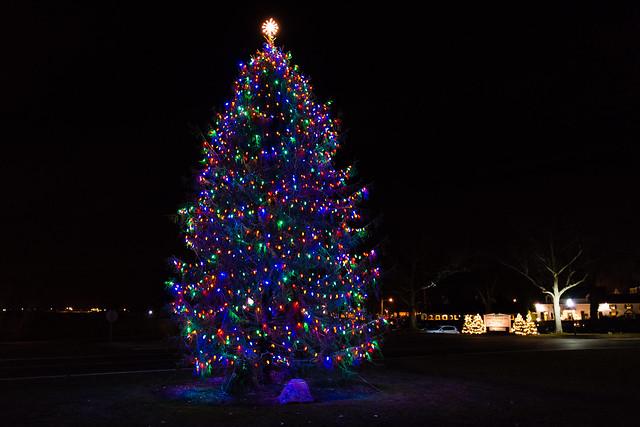 Quincy Market Christmas Tree Lighting
