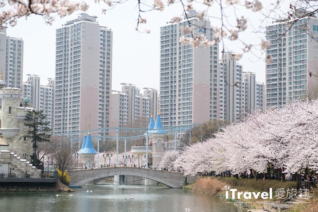 首尔赏樱景点 乐天塔石村湖 (37)