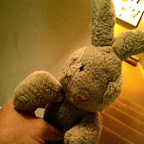 Travel Bunny Pre-wash