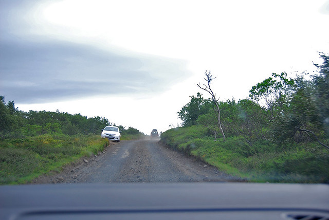 Parque Nacional de Jökulsárgljúfur - Carretera 862 antes de Hljóðaklettar