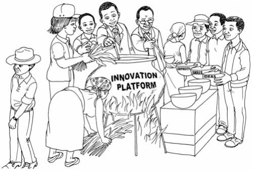 Developing innovation capacity through innovation platforms (image credit: ILRI/Bonaventure Nyotumba)