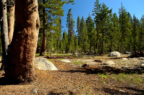 Porcupine Flat